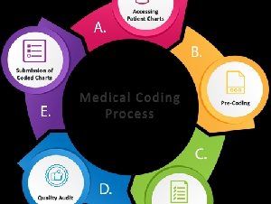 Medical Coding, CPC Training and Placements